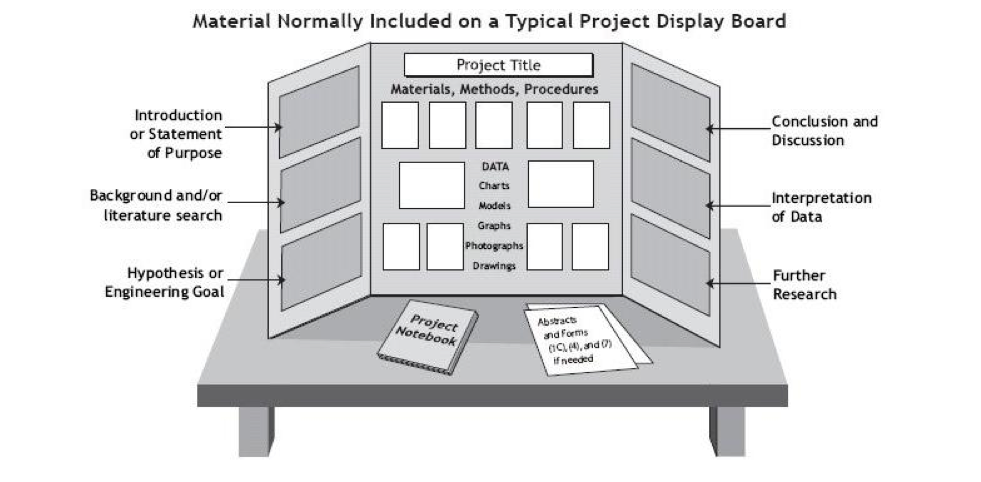 Science project board format